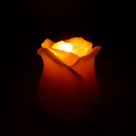 Beeswax Rosebud Candle Burning
